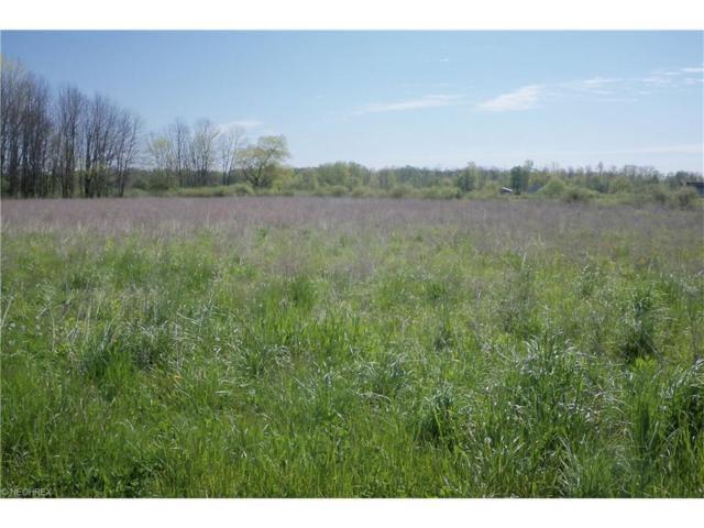 Twp Road 791, Nova, OH 44859 (MLS #3809401) :: Tammy Grogan and Associates at Cutler Real Estate