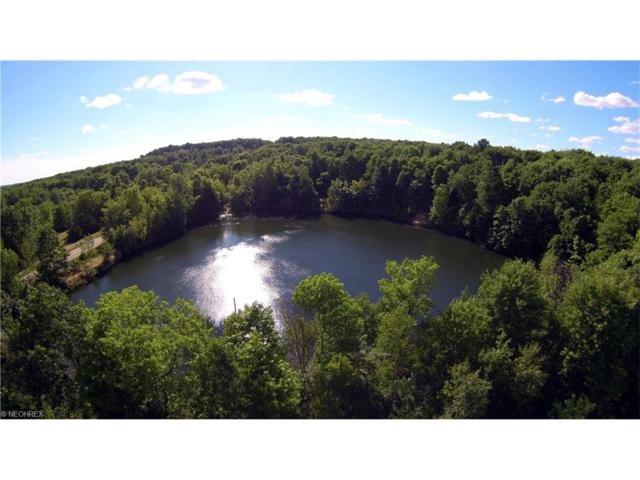 Lot 35 SW State Route 305, Garrettsville, OH 44231 (MLS #3835351) :: RE/MAX Edge Realty