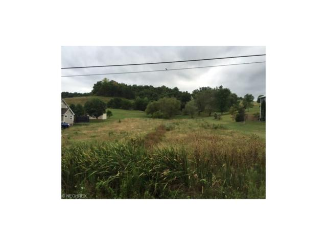 Waterford Rd, Marietta, OH 45750 (MLS #3837155) :: Tammy Grogan and Associates at Cutler Real Estate