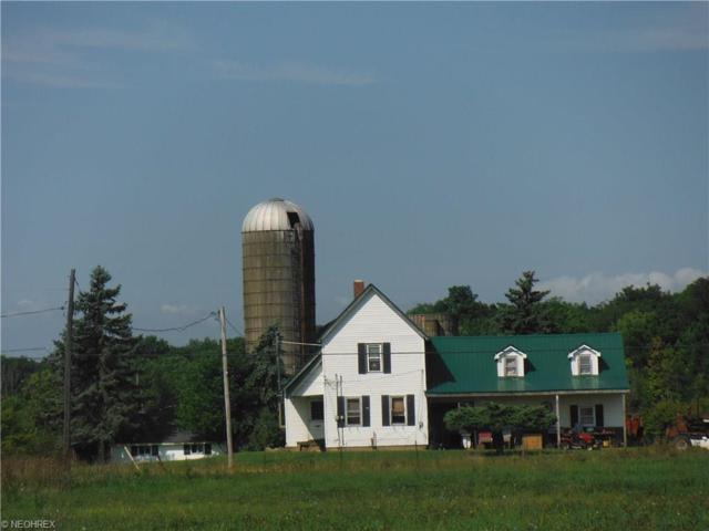 14000 Bass Lake Rd, Newbury, OH 44065 (MLS #3840506) :: The Crockett Team, Howard Hanna