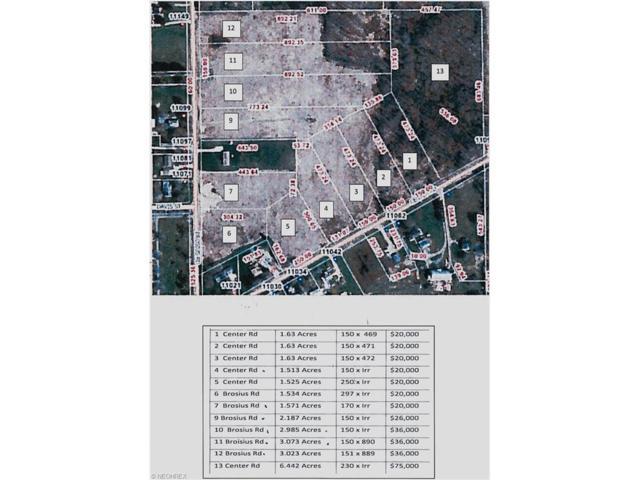 V/L 3 Center Rd, Garrettsville, OH 44231 (MLS #3849256) :: Tammy Grogan and Associates at Cutler Real Estate
