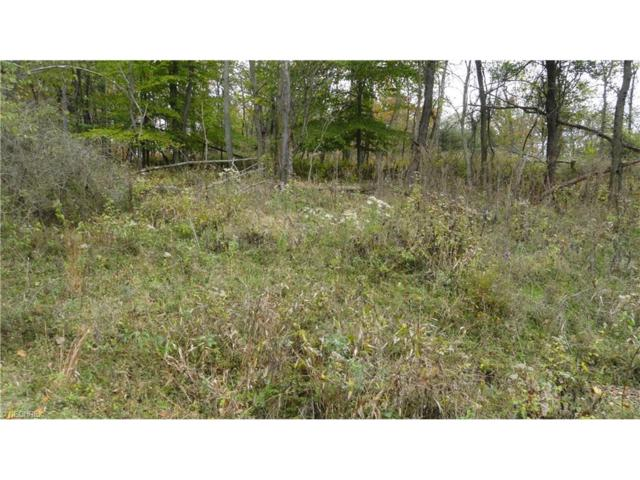 Bryden Rd - Lot # 40, Weirton, WV 26062 (MLS #3855861) :: RE/MAX Edge Realty