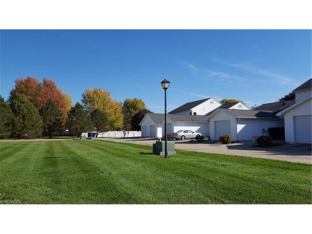 Vl Cold Creek Ct, Castalia, OH 44824 (MLS #3861343) :: The Crockett Team, Howard Hanna
