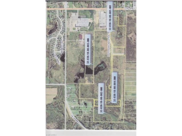Rootstown Industrial Pky, Rootstown, OH 44272 (MLS #3874273) :: Keller Williams Chervenic Realty