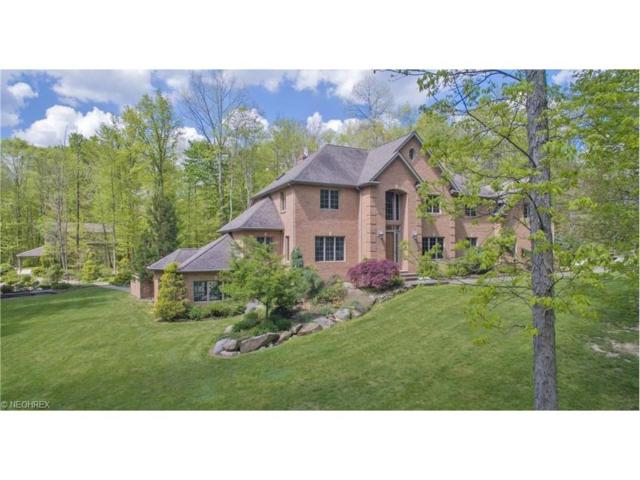 12805 Greystone Dr, Hiram, OH 44234 (MLS #3877213) :: Tammy Grogan and Associates at Cutler Real Estate