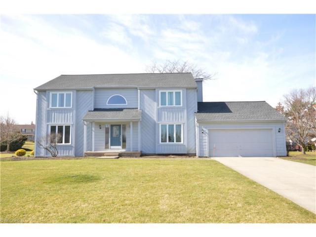 33580 Seneca Dr, Solon, OH 44139 (MLS #3878440) :: Tammy Grogan and Associates at Cutler Real Estate
