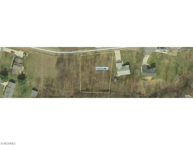 Trappers Hollow Rd, Zanesville, OH 43701 (MLS #3882815) :: Tammy Grogan and Associates at Cutler Real Estate