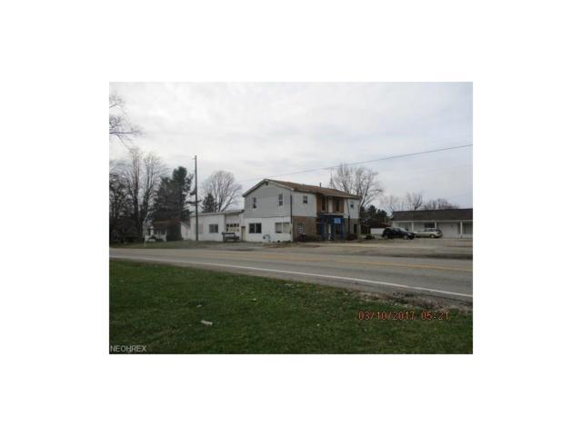 7229-7231 State Route 9, Hanoverton, OH 44423 (MLS #3885376) :: Keller Williams Chervenic Realty