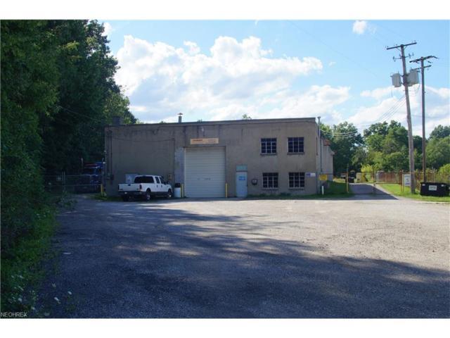 529 Oakwood St, Ravenna, OH 44266 (MLS #3885458) :: The Crockett Team, Howard Hanna