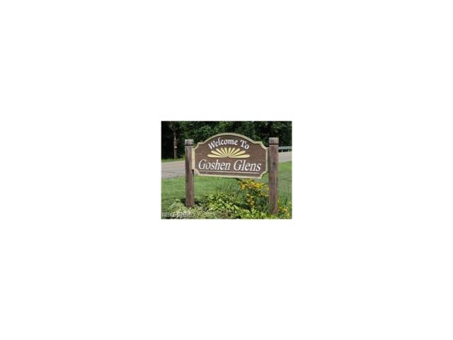 27 Goshen Glens Dr SE, New Philadelphia, OH 44663 (MLS #3885915) :: Tammy Grogan and Associates at Cutler Real Estate