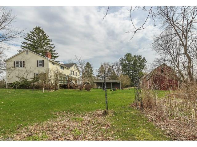 12671 Pearl Rd, Hambden, OH 44024 (MLS #3891428) :: Tammy Grogan and Associates at Cutler Real Estate