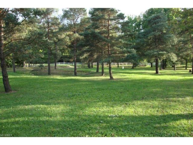 Lot 6 W River Road & Grafton Rd, Valley City, OH 44280 (MLS #3899882) :: RE/MAX Edge Realty