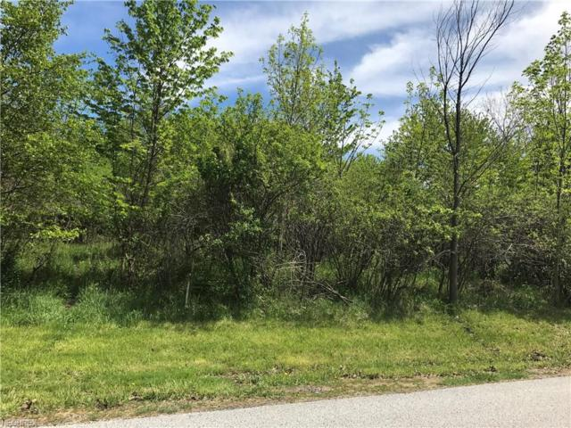 Euclid-Chardon Rd, Willoughby Hills, OH 44092 (MLS #3901431) :: RE/MAX Edge Realty
