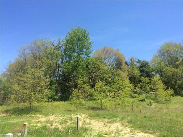 758 Eldridge Road, Wadsworth, OH 44281 (MLS #3901843) :: Select Properties Realty