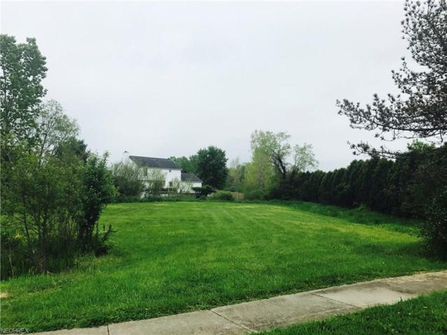 210 W Greenwich Rd, Seville, OH 44273 (MLS #3902905) :: Tammy Grogan and Associates at Cutler Real Estate