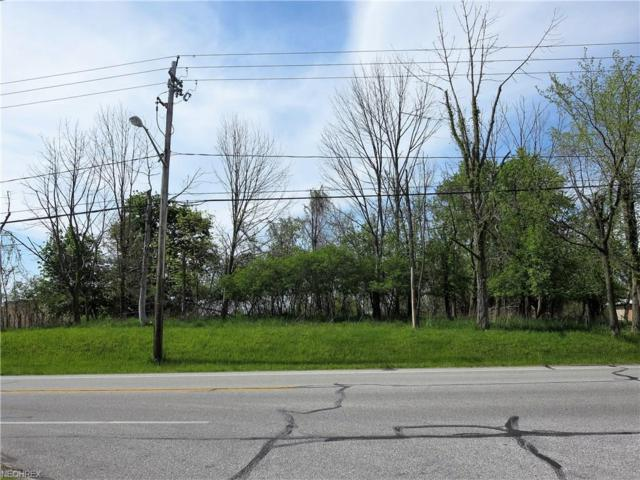 Wallings Rd, North Royalton, OH 44133 (MLS #3903179) :: Tammy Grogan and Associates at Cutler Real Estate