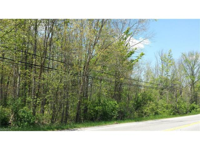 V/L State Route 43, Streetsboro, OH 44241 (MLS #3904577) :: Tammy Grogan and Associates at Cutler Real Estate