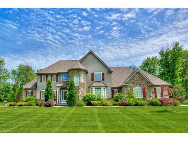 16065 Addington Ct, Newbury, OH 44065 (MLS #3909280) :: The Crockett Team, Howard Hanna
