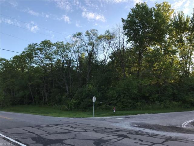 V/L Sanford St, Painesville, OH 44077 (MLS #3909717) :: The Crockett Team, Howard Hanna