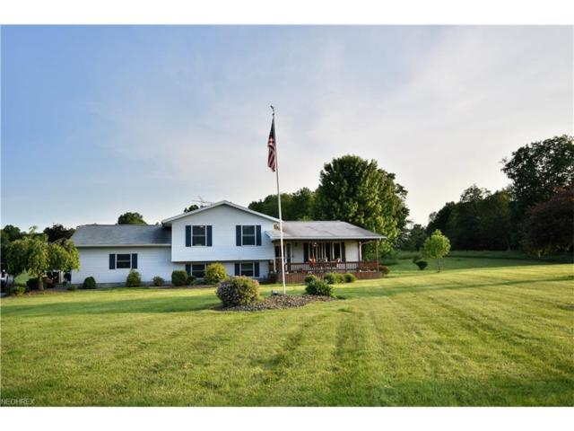 42603 Crestview Rd, Leetonia, OH 44431 (MLS #3910190) :: RE/MAX Valley Real Estate