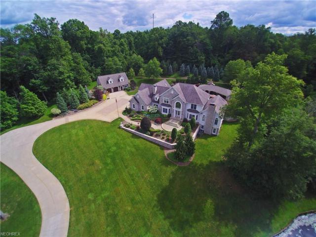 12450 Falcon Ridge Rd, Chesterland, OH 44026 (MLS #3911986) :: The Crockett Team, Howard Hanna
