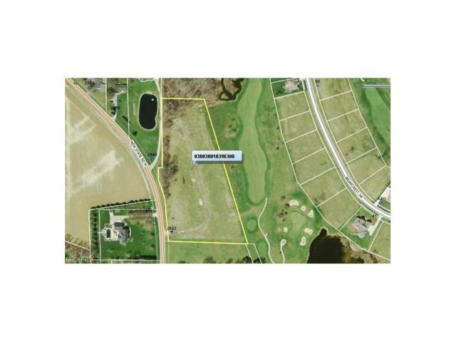 Lot 63 New State Road, Norwalk, OH 44857 (MLS #3912164) :: The Art of Real Estate