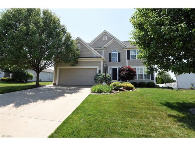 113 Canterbury Ct, Columbiana, OH 44408 (MLS #3912564) :: RE/MAX Valley Real Estate