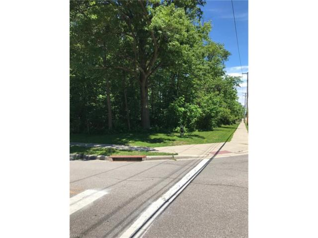 S/l 107/-108 Community Rd, Sheffield Lake, OH 44054 (MLS #3913245) :: Keller Williams Chervenic Realty