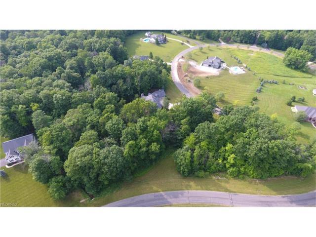 V/L Rolling Meadows Dr, Garrettsville, OH 44231 (MLS #3913601) :: Keller Williams Chervenic Realty