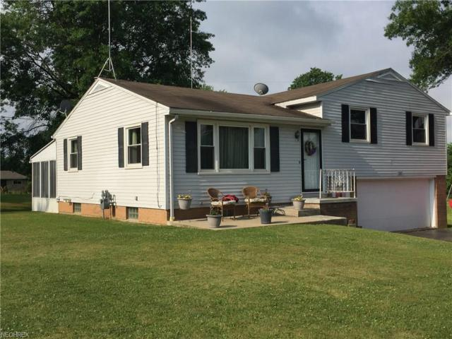 249 Bell Ave, Columbiana, OH 44408 (MLS #3913606) :: RE/MAX Valley Real Estate