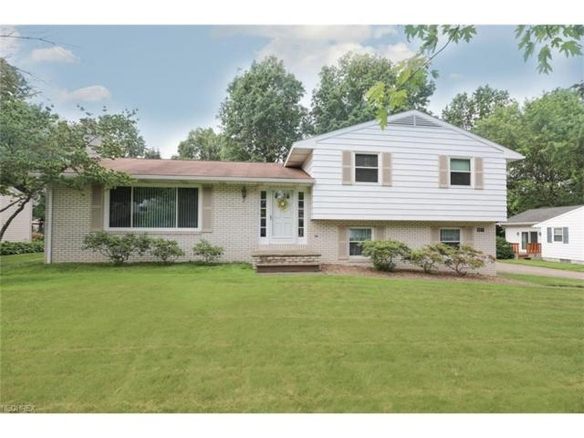 327 Kingwood Dr, Columbiana, OH 44408 (MLS #3913623) :: RE/MAX Valley Real Estate