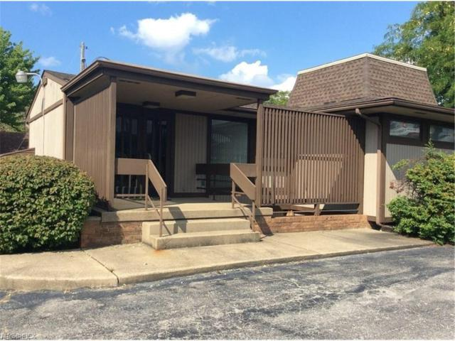 4810 Mahoning Ave, Austintown, OH 44515 (MLS #3914331) :: RE/MAX Valley Real Estate