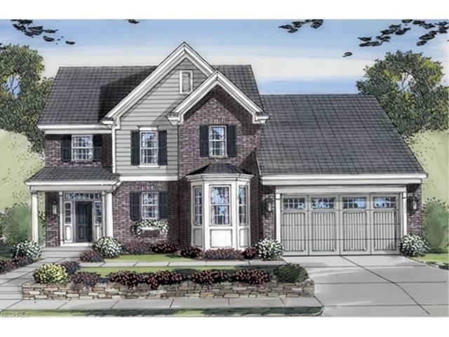 234 Melanie Ln, Doylestown, OH 44230 (MLS #3914919) :: Tammy Grogan and Associates at Cutler Real Estate