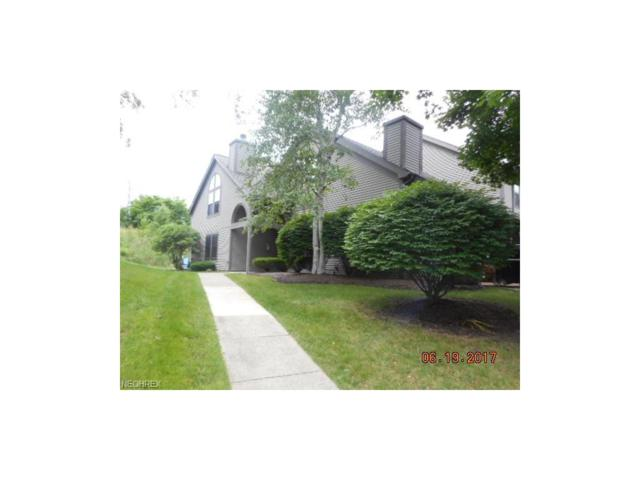 4056 Saint Andrews Ct #6, Canfield, OH 44406 (MLS #3915095) :: RE/MAX Valley Real Estate