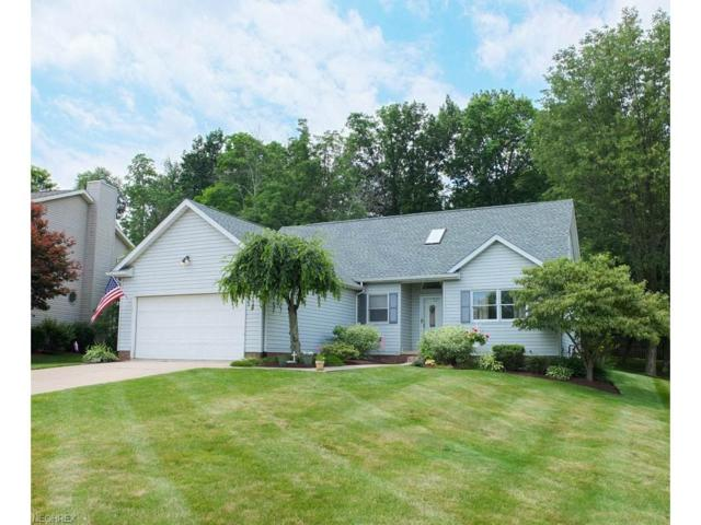 1017 Prescot Ave NW, Massillon, OH 44646 (MLS #3915352) :: Keller Williams Legacy Group Realty