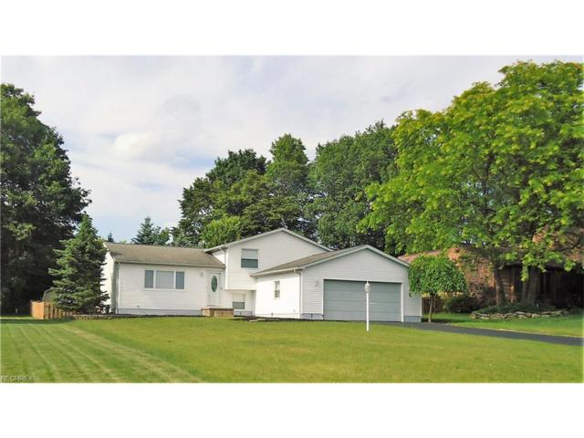 6932 Slippery Rock Dr, Canfield, OH 44406 (MLS #3916098) :: RE/MAX Valley Real Estate