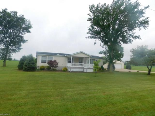 8910 Duck Creek Rd, Salem, OH 44460 (MLS #3916252) :: RE/MAX Valley Real Estate