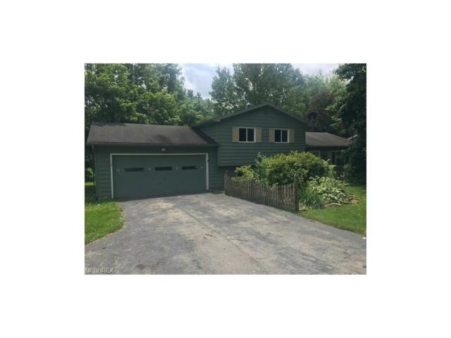 2227 Hubbard Masury Rd, Hubbard, OH 44425 (MLS #3916372) :: RE/MAX Valley Real Estate