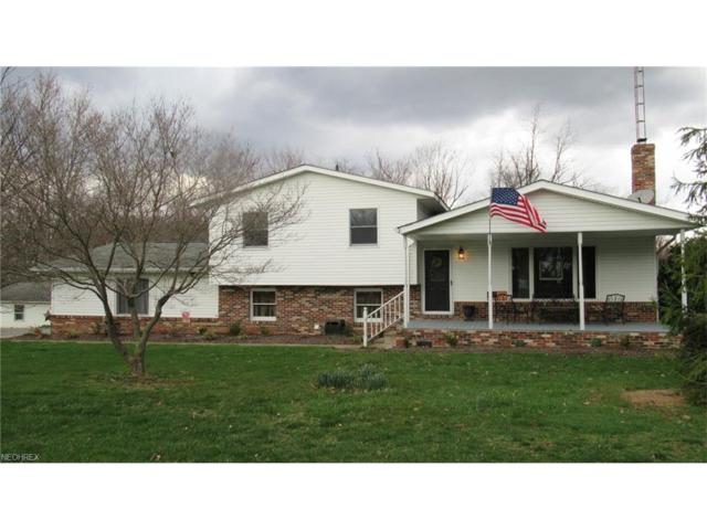 39530 State Route 39, Wellsville, OH 43968 (MLS #3916424) :: RE/MAX Valley Real Estate