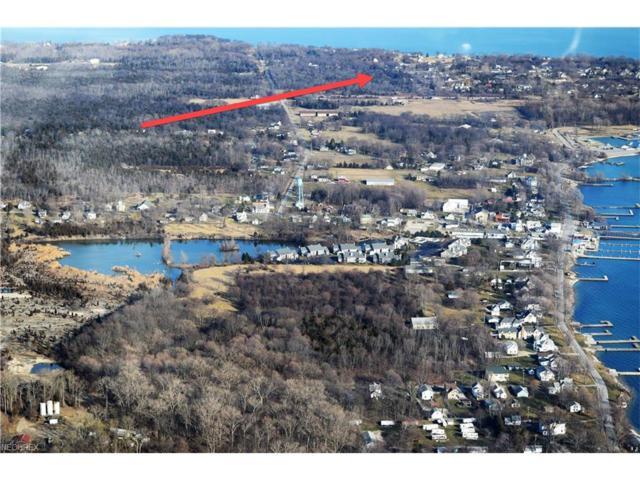 142/143 Cedar Ln, Kelleys Island, OH 43438 (MLS #3916583) :: Tammy Grogan and Associates at Cutler Real Estate