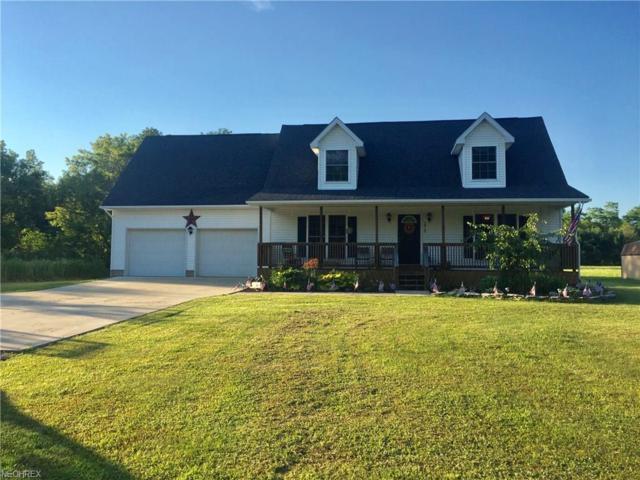 2518 Ernest Lyntz Rd SW, Warren, OH 44481 (MLS #3916717) :: RE/MAX Valley Real Estate