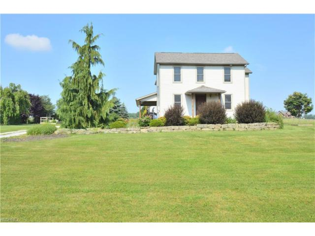 10508 Detwiler Rd, Canfield, OH 44406 (MLS #3916718) :: RE/MAX Valley Real Estate