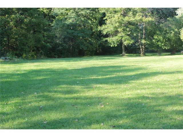 Huntley, Warren, OH 44484 (MLS #3916756) :: RE/MAX Valley Real Estate