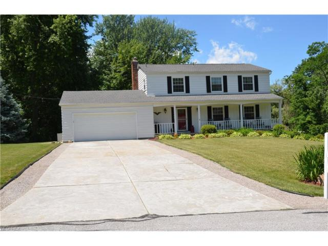 7766 Skylineview Dr, Mentor, OH 44060 (MLS #3916882) :: RE/MAX Valley Real Estate