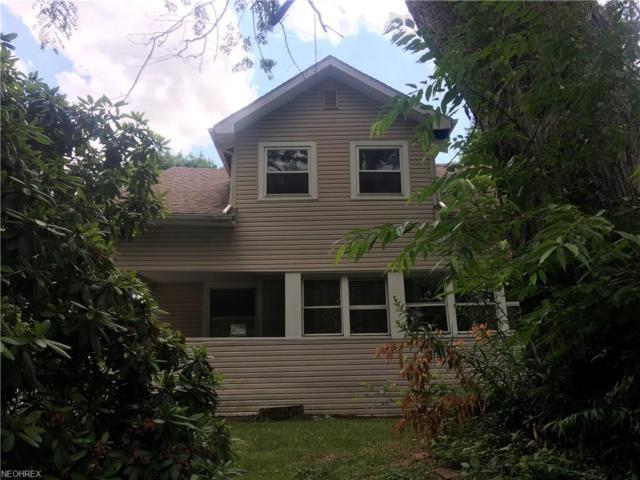 1388 Chippewa Ave, Akron, OH 44305 (MLS #3919384) :: The Crockett Team, Howard Hanna