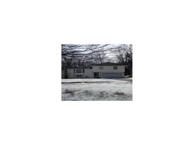 490 Taft Ave, Bedford, OH 44146 (MLS #3920266) :: The Crockett Team, Howard Hanna