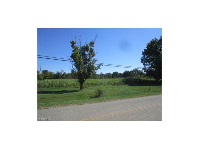 Rose Hill Rd, Roseville, OH 43777 (MLS #3924025) :: Keller Williams Chervenic Realty