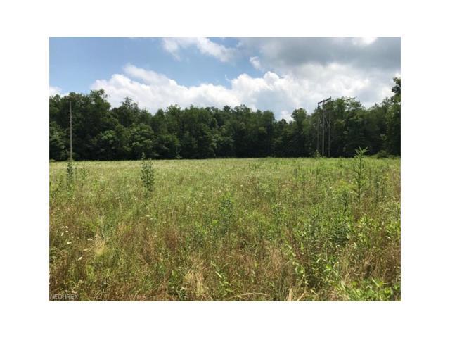 776 Township Road 61, Hammondsville, OH 43930 (MLS #3924386) :: Keller Williams Chervenic Realty