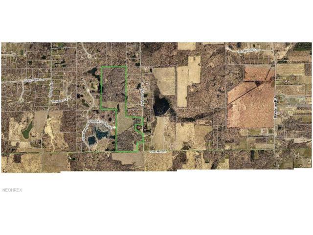 V/L Auburn-Crackel Rd, Chagrin Falls, OH 44023 (MLS #3924782) :: The Crockett Team, Howard Hanna