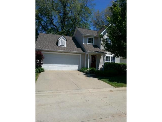 5566 Saint Thomas Ln, Madison, OH 44057 (MLS #3925210) :: The Crockett Team, Howard Hanna